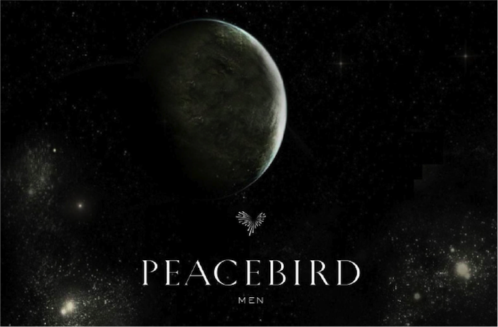 PEACEBIRD MEN 2015 A/W FASHION SHOW